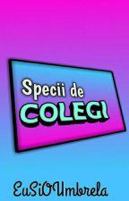 Specii De Colegi by EuSiOUmbrela