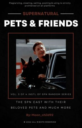 Cats & Dogs... and so much more by Moon_child92