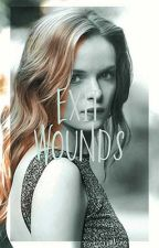 Exit Wounds ⌲ B. BANNER by dubrevh
