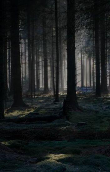 Lenda do bosque