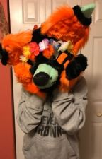 My Fursuiting History by 0-False-Canidae-0