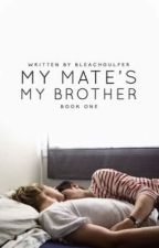 My Mate is my Brother book one by Mymateismy