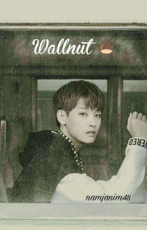 [ON GOING] Wallnut • Inseong {Malay}  by namjanim48
