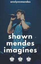 ✨Shawn Mendes Imagines✨ by AnnLynnMendes