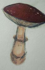 Zagubiony Artbook by -Zagubiona-