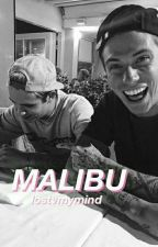 Malibu\\Fenji by lostvmymind