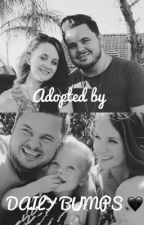 Adopted By Daily Bumps?!?! by sj_bumps