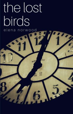 The Lost Birds by elena_norwood