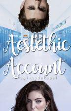 Aestethic Account ||CERRADO|| by PaginasdePapel