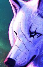 Alpha Werewolf x  Omega reader (Girl) by creepypasta-girl