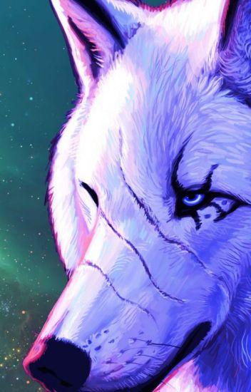 Alpha Werewolf x Omega reader (Girl) - creepypasta-girl