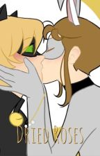 Dried Roses (Chat Noir x Reader)  by Autumntide