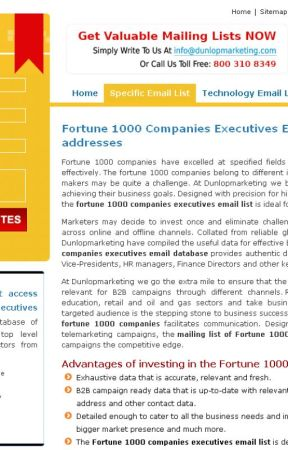 Fortune 1000 Companies Executives Email Lists - Connect effectively