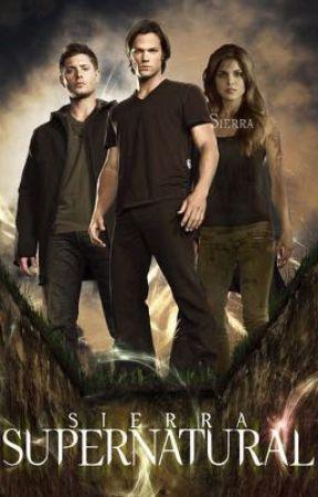 Supernatural | Teen Wolf by deanmonic
