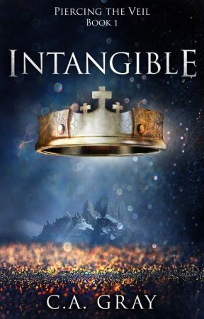 Intangible: Piercing the Veil, Book 1 by CAGray