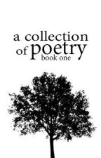 A Collection of Poetry Book One by NecessitteeLyday