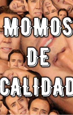 Momos de calidad :v by EmeC25