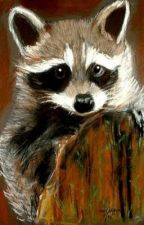Cherokee Raccoon  by itschill