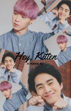 Hey, Kitten by __lonelycat__