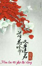 Mùa hoa rơi gặp lại chàng - Thục Khách by pkLinh