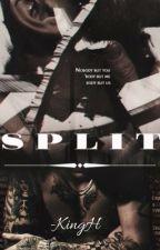 Split (Zarry) by queenputax