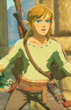 The Legend of Zelda Yaoi Oneshots by HYLlAN