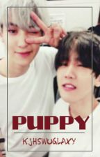 Puppy  • Chanbaek Texting • by kjhswuglaxy