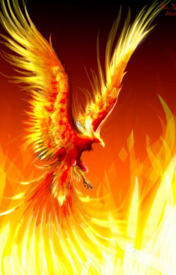 Phoenix's Reincarnation (A Young Justice Fanfiction