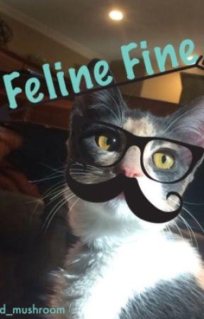 Feline Fine  by wild_mushroom