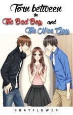 Torn Between The Bad Boy and The Nice Guy by grayflower