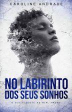 No Labirinto do Seus sonhos by carolinda2660