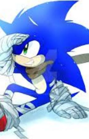 Long Lost Friend | Sonic Boom (Sonic x reader) by adorablefox61