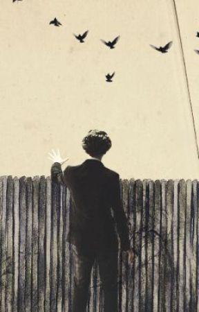 My Neighbour Is A Sociopath ➝ Sherlock x OC - CHAPTER