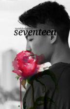 seventeen • dlge by tumblrdarren