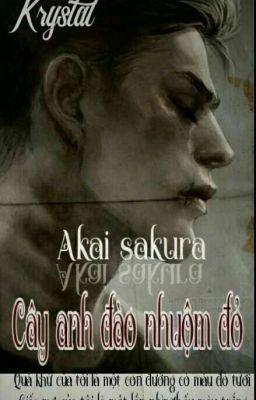 Akai sakura-Cây anh đào nhuộm đỏ