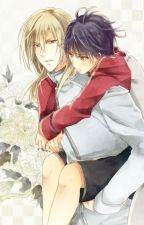 Hakkenden: Feathers Across the Seasons by YEAGER__BOMBASTIC
