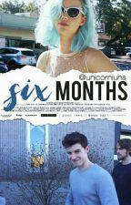Six Months ✦ Shawn Mendes by unicorniuns
