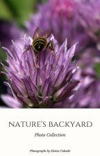 Nature's Backyard by euskoski
