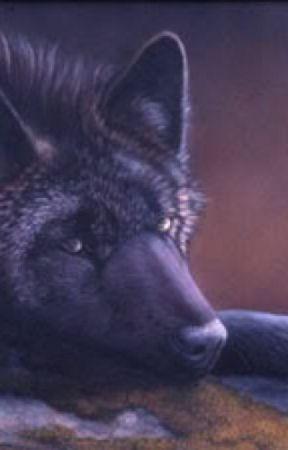 Aarmau wolf book by mastertiger1