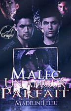 Malec, Un amour (presque) parfait by MadelineLeleu