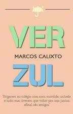 Verzul  by marcoscalisto