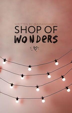 Shop of wonders by AmandaGrin