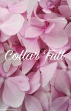 Collar Full || Muke Clemmings by fletcherssmile98