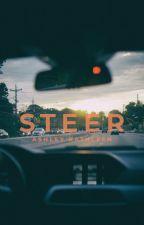 Steer by londonlocket