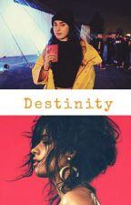 Destinity ( Camren-G!p) by VitoriaQuirino9