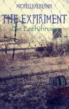 The Expirement  by michellekebernik