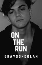 on the run; grayson dolan fanfic  by cringiestdolan