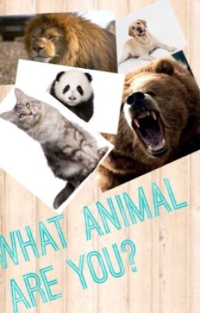 What animal are you  by pianostarbucks11