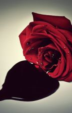 BLOOD ROSE by wolfgang_chericos