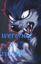 The monster at night (werehog × reader) by Mysterytalegirl